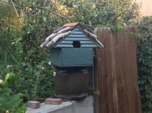 Evan's bird house.